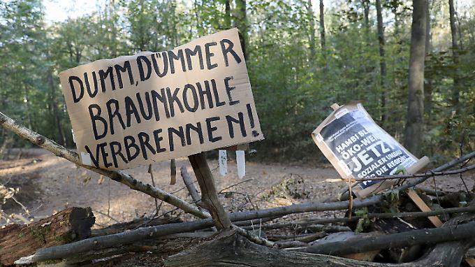 Ein Teilerfolg für die Umweltschützer? RWE hat laut Medienbericht zumindest angekündigt, die Braunkohleförderung zurückzufahren.