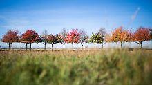 Hoch sorgt für goldenen Oktober: Mit diesem Wetter können Reisende rechnen