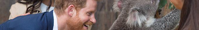 Der Tag: 07:19 Briten wetten auf Namen von Meghans und Harrys Baby