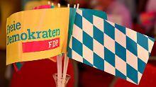 """""""In keinem Fall"""": Klage gefährdet FDP-Wiedereinzug nicht"""
