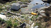Von wegen Naturidyll: Auch Norwegens Küste ist voller Plastik