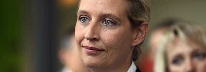 """""""Stichting Identiteit Europa"""": Weidels AfD-Kreis erhielt Geld aus Belgien"""