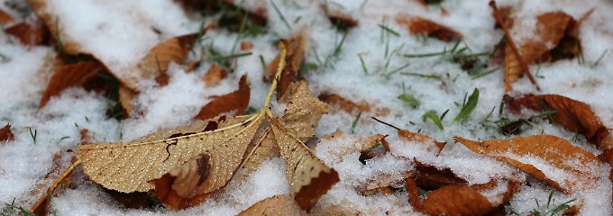 Kommt der erste Schnee?: Erste Winterluft zieht heran