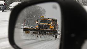Verkehrchaos mit tierischer Überraschung: Erster Schneesturm bricht über USA herein