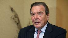 """""""Führen sich wie Besatzer auf"""": Schröder kritisiert Handelspolitik der USA"""