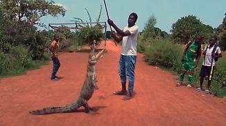 Angeblich ungefährliche Raubtiere: Dorf lebt direkt neben wilden Krokodilen
