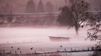 Temperaturen bis minus 12 Grad: Deutschland steht eisige Nacht bevor