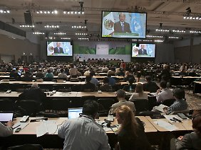 Weitgehende Einigkeit Klimakonferenz in Cancún.