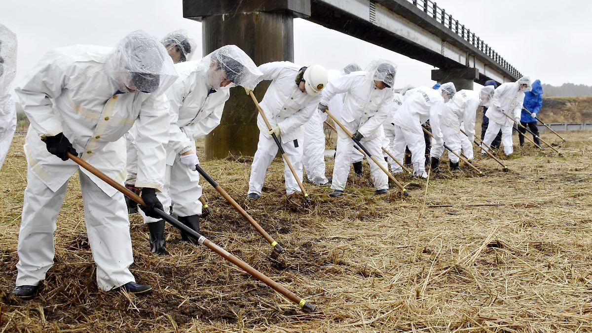 Gehen Fukushima die Schutzanzüge aus?