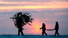 Zu Weihnachten CO2 sparen: Frohes Fest fürs Klima