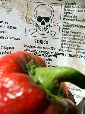 Immer wieder bemängeln Verbraucherschützer Pestizid-Rückstände in Paprika.