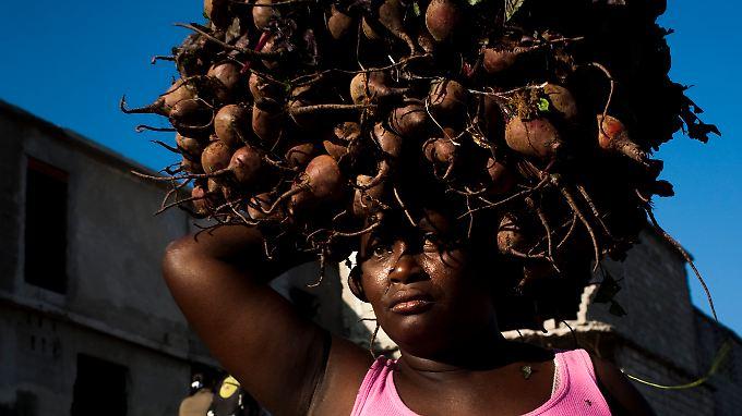 Weltweit steigende Lebensmittelpreise: Hungerrevolten sind programmiert