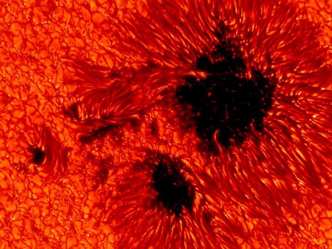 Sonnenflecken im Detail: Magnetfelder bewirken an manchen Stellen, dass nicht so viel Wärme aus dem Innern der Sonne in sichtbare Strahlung umgewandelt wird. Deshalb erscheinen die Flecken dunkel.