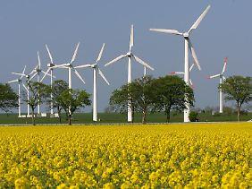 Auch die Nutzung alternativer Energien ist vielen wichtig.