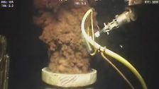 """Schmutziges Reinemachen: Die """"Deepwater Horizon""""-Ölpest"""