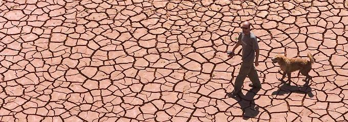 ... Dürre: Die Folgen des Klimawandels sind hinlänglich bekannt.