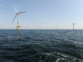 """Der Offshore-Windpark """"Alpha Ventus"""" rund 45 Kilometer vor Borkum gehört denEnergieversorgern EWE, Eon und Vattenfall."""