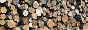 Extrem verdichtetes Holz: Neuer Super-Baustoff geeignet für Panzerung