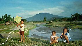 Nach der Reisernte spielen diese Minangkabau-Kinder mit einem Drachen. Die Kinder sind im ganzen Clan zu Hause.