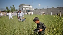 Terrorversteck in Abbottabad: Kinder bergen am Morgen danach Trümmerteile aus der Umgebung.