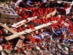 Tomatenvernichtung auf einer Deponie.