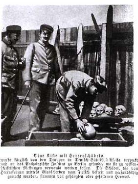 Beamte verpacken Schädel von Herero für den Transport nach Berlin.