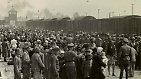 """""""In einer Welt der Toten und der Larven"""": Die Befreiung von Auschwitz"""