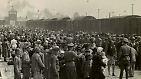 """""""Eine Welt der Toten und Larven"""": Die Befreiung von Auschwitz"""