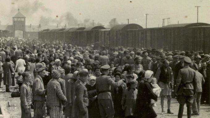Viele Häftlinge wussten bei ihrer Ankunft nicht, was sie in Auschwitz erwartet.