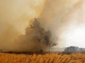 """2010 war das heißeste Jahr seit Beginn der Wetteraufzeichnungen - heißer noch als der """"Jahrhundertsommer"""" von 2003. Im Juli 2010 starben in Moskau 5000 Menschen mehr als im Vorjahresmonat."""