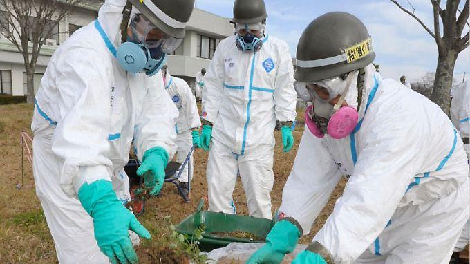 Dekontaminierung beginnt: Fukushima soll wiederbelebt werden