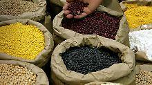 Lebensmittel erhalten oft gefälschte Biozertifikate.