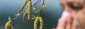 Obwohl der Frühling noch nicht richtig da ist, sind die Allergiker schon pollengeplagt.