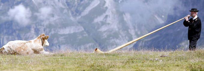 Schweizer Männer müssen manchmal ein wenig angestoßen werden.