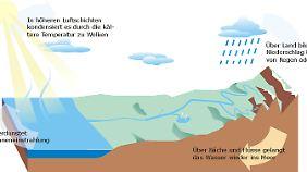 Ein immerwährender Kreislauf: Wasser zirkuliert.