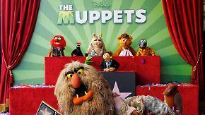 Plüschauflauf auf dem Walk of Fame: Muppets bekommen einen Stern