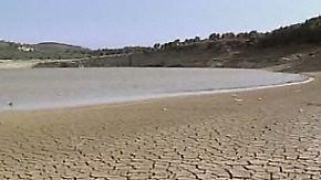 Ganze Ökosysteme werden vernichtet: Menschen übernutzen die Erde