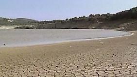 Ganze Ökosysteme werden vernichtet: Menschen übernutzen die Erde dramatisch