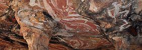 Laut Bryce Baker sind diese Zeichnungen etwa 28.000 Jahre alt.