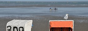 Die Durchschnittstemperatur der Nordsee steigt seit Jahren.