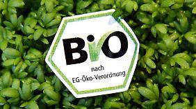 Ernüchterndes Ergebnis: Bio-Lebensmittel kaum gesünder