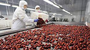 Verdächtige TK-Erdbeeren aus China: Neue Brechdurchfall-Fälle gemeldet