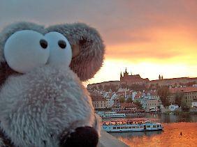 Ein Plüschtier in Prag vor der Moldau und der dahinter liegenden Prager Burg, ...