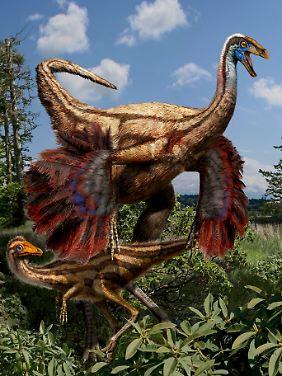 Diese Illustration zeigt, wie der in Alberta entdeckte gefiederte Dinosaurier der Gattung Ornithomimus ausgesehen haben könnte.