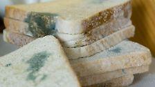 Keine Desinfektion im Haushalt: Der richtige Umgang mit Keimen