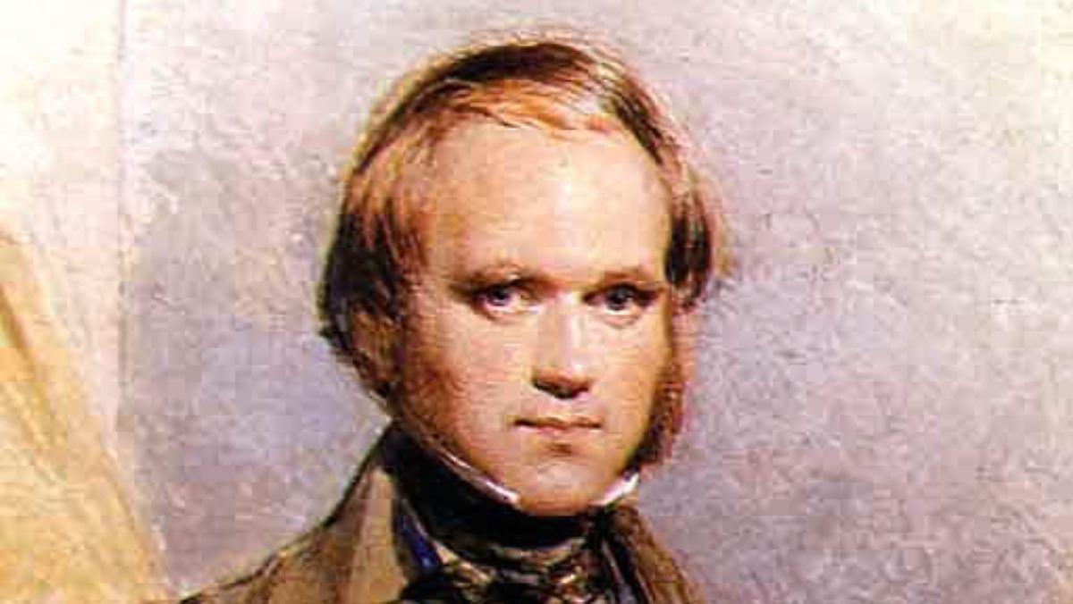 Heirat zwischen Verwandten: Warum Darwins Kinder starben ...