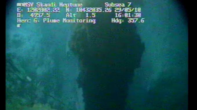 Täglich fließen tausende Tonnen Öl ins Meer. Eine Ende der Katastrophe ist nicht absehbar.