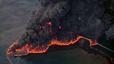 Öl im Golf von Mexiko: Schwarz, zähflüssig, verhängnisvoll