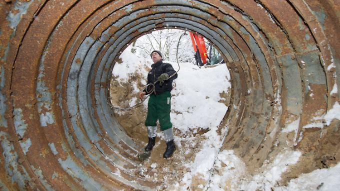 Im Pasewalker Kirchenforst sind die längst verschollen geglaubten Tunnelteile wieder aufgetaucht.