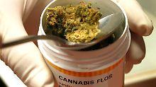Cannabis als Arzneimittel bei MS: Untersuchung dämpft Hoffnung